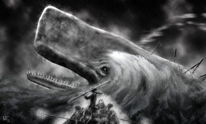 Moby Dick by deviantART user EIMJ